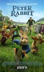 Tavşan Peter – (Peter Rabbit)
