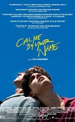 Beni Adınla Çağır – (Call Me by Your Name)