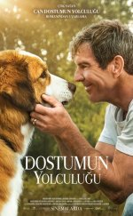 Dostumun Yolculuğu – (A Dog's Journey)