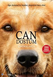 A Dog's Purpose | 2017 | Can Dostum Film izle