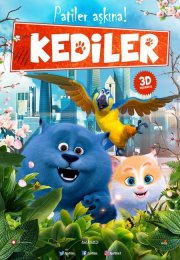 Kediler – (Cats and Peachtopia)